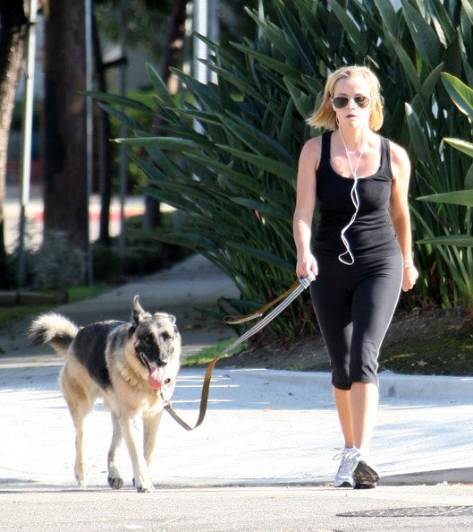 40+ Celebrities With German Shepherd Dogs – The Paws