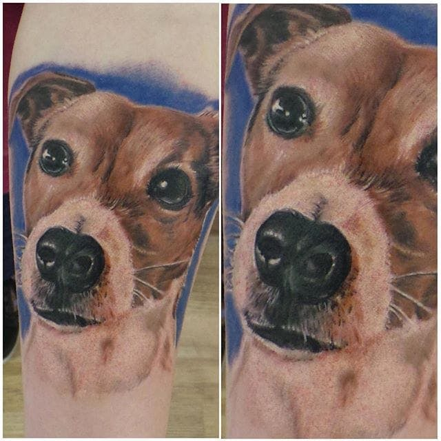 The 25+ Best Jack Russell Terrier Tattoo Ideas – The Paws