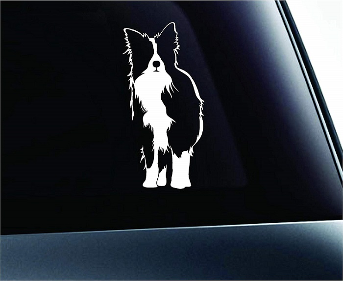 Border Collie Silhouette Sticker