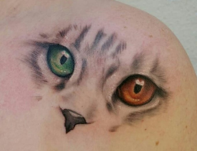 24 Best Cat Eye Tattoo Designs The Paws
