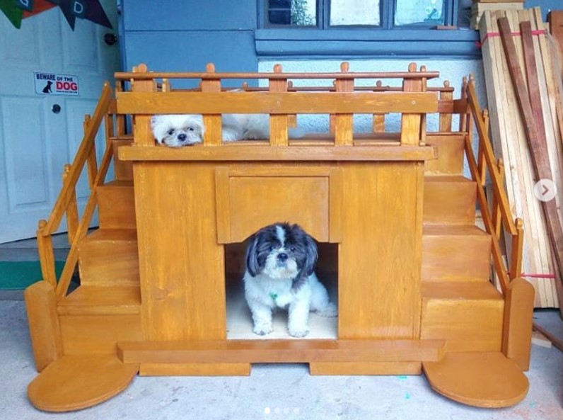 Dog house with stairs and balcony, Awesome dog house