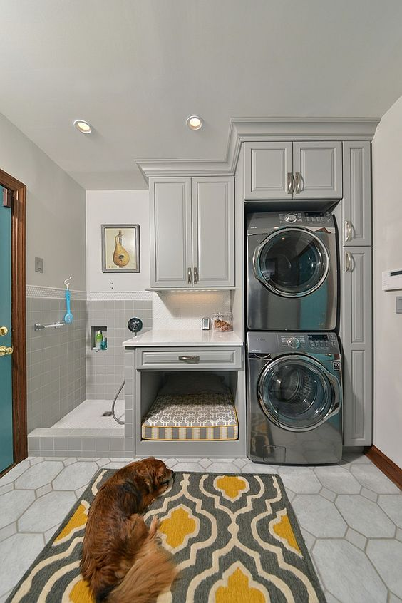 38 Best Dog Room Decorating Ideas The Paws