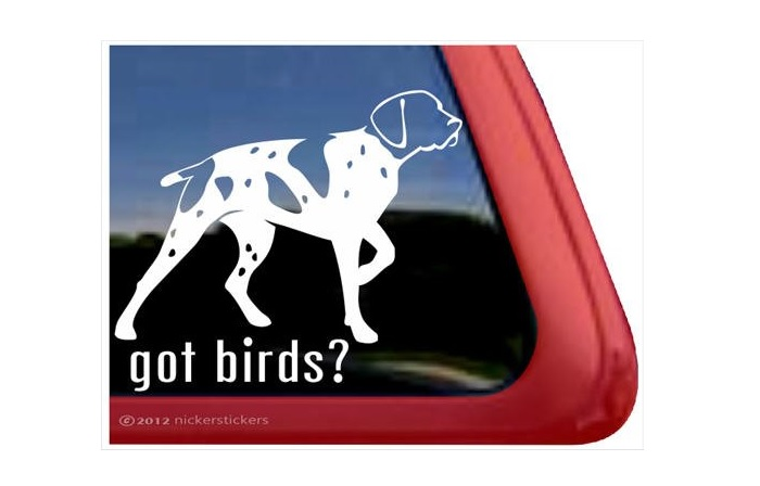 German Shorthaired Pointer Decal Sticker