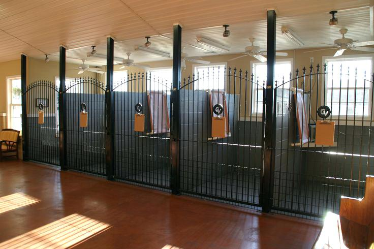 Large indoor dog kennel, Dog boarding kennel