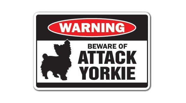 Beware of Attack Yorkie Warning Sign