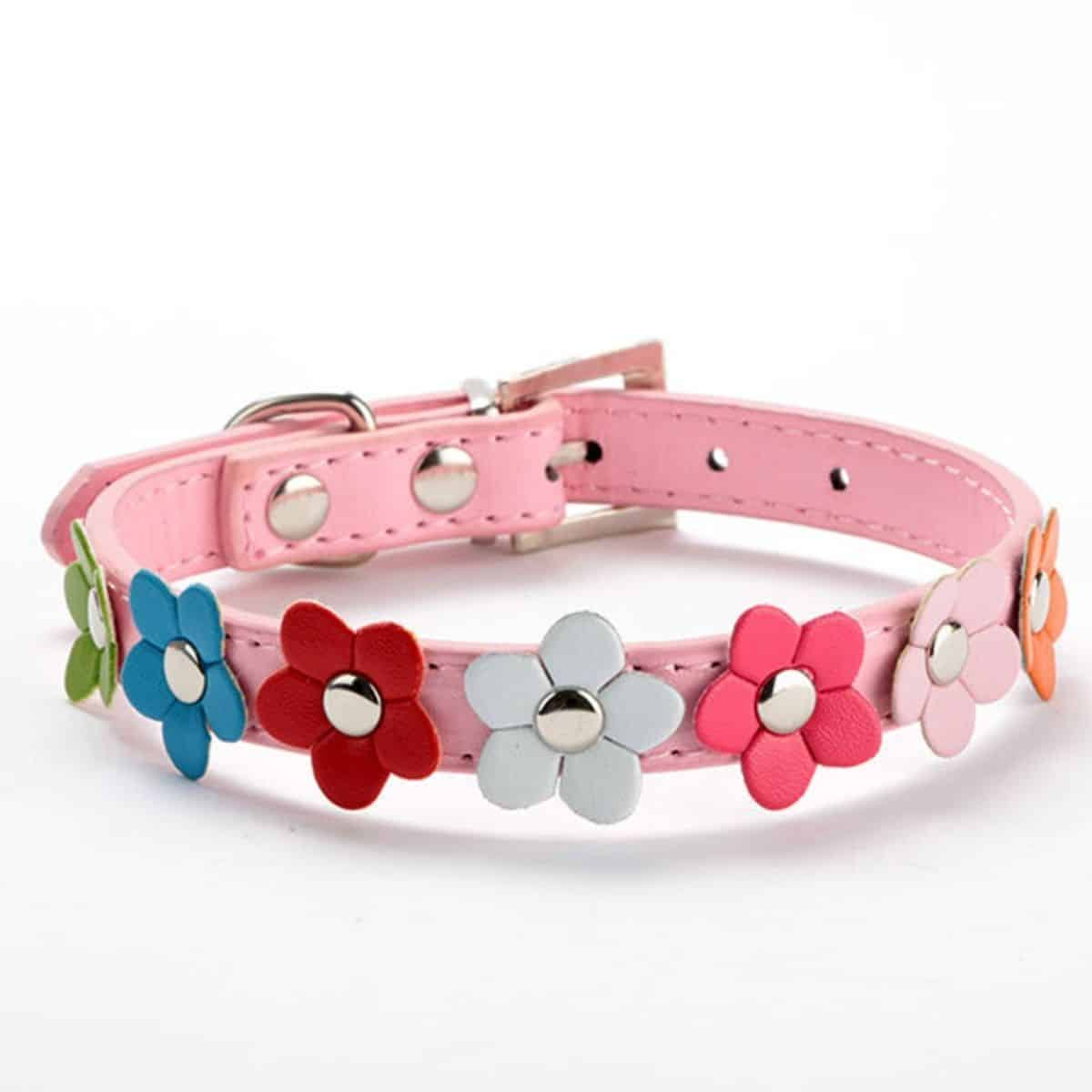 Baby pink dog collar with colorful flowers