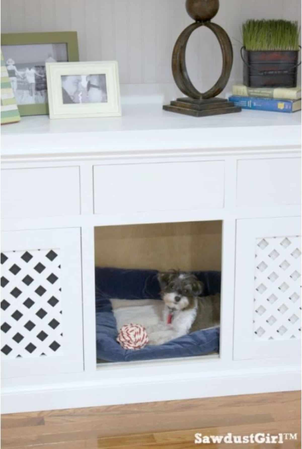 DIY built in bookshelf dog crate