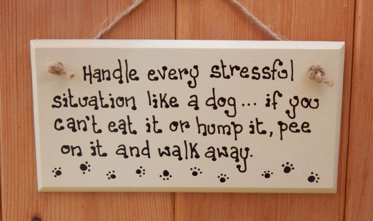 funny sign wall decoration