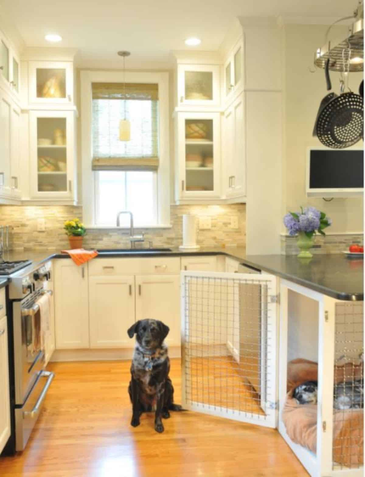 Built in Kitchen dog crate