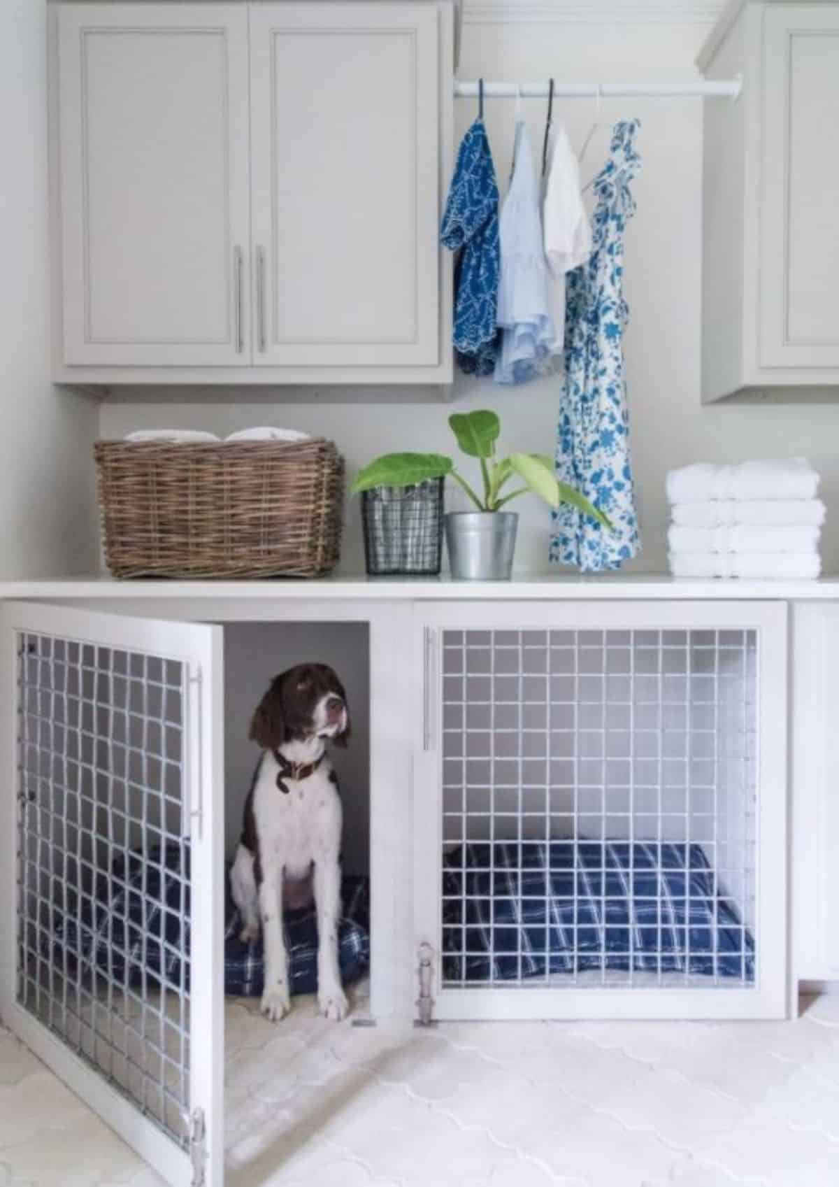 laundy room dog crate idea