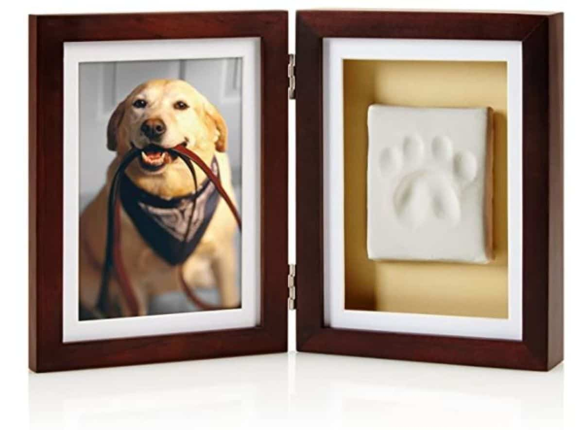 picture frame and pawprint