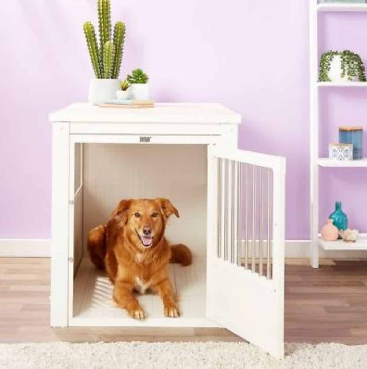 singe door dog crate idea